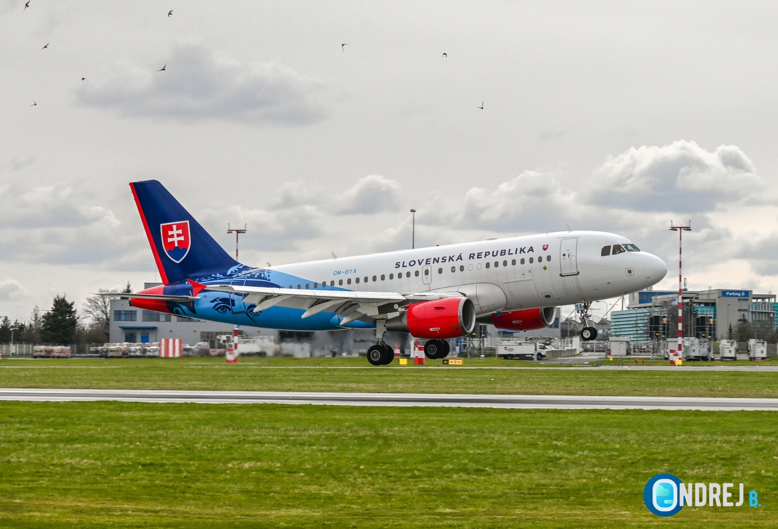 Slovak government Airbus A319