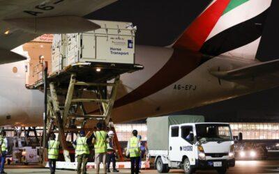 Emirates SkyCargo přepraví na olympiádu 247 koní