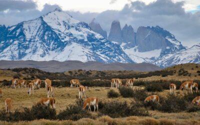 Chile v říjnu znovu otevře hranice